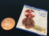 Expanded English Penny shell エクスパンデットイングリッシュペニーシェル
