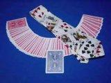 Card on Tie カードオンタイ